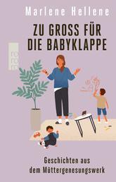 Zu groß für die Babyklappe - Geschichten aus dem Müttergenesungswerk