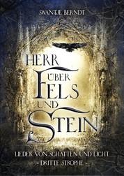 Herr über Fels und Stein - Lieder von Schatten und Licht Band 3