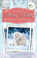 Andrea Wandel: Ein Pony für alle Fälle - Elfter Roman: Weihnachten mit Hindernissen ★★★★★