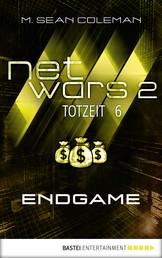 netwars 2 - Totzeit 6: Endgame - Thriller