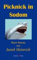 Janek Heinrich: Picknick in Sodom