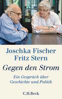 Joschka Fischer: Gegen den Strom ★★★★★