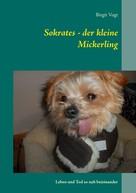 Birgit Vogt: Sokrates - der kleine Mickerling