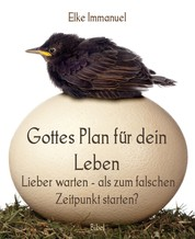 Gottes Plan für dein Leben - Lieber warten - als zum falschen Zeitpunkt starten?