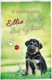 Ellie findet das Glück - Band 2
