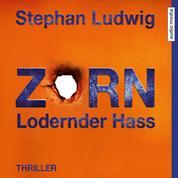 Zorn 7 – Lodernder Hass
