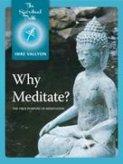 Imre Vallyon: Why Meditate?