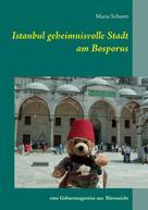 Maria Schuett: Istanbul geheimnisvolle Stadt am Bosporus