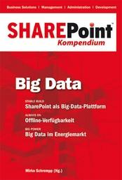 SharePoint Kompendium - Bd.4: Big Data - Big Data