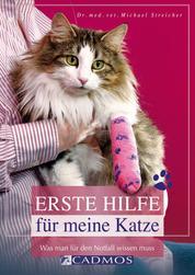 Erste Hilfe für meine Katze - Was man für den Notfall wissen muss