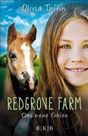 Olivia Tuffin: Redgrove Farm – Das neue Fohlen ★★★★★