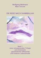 Wolfgang Wellmann: Die Reise nach Shamballah ★★★