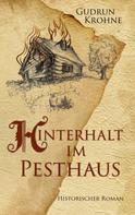 Gudrun Krohne: Hinterhalt im Pesthaus