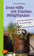 Coco Burckhardt: Erste Hilfe mit frischen Wildpflanzen ★★★★
