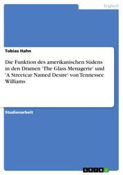Die Funktion des amerikanischen Südens in den Dramen 'The Glass Menagerie' und 'A Streetcar Named Desire' von Tennessee Williams