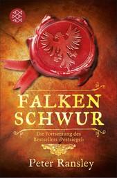 Falkenschwur - Die Fortsetzung des Bestsellers »Pestsiegel«