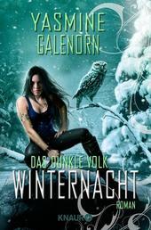 Das dunkle Volk: Winternacht - Roman