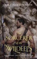 Kai Ashante Wilson: The Sorcerer of the Wildeeps