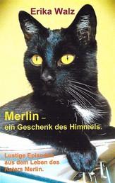 Merlin - ein Geschenk des Himmels. - Lustige Episoden aus dem Leben des Katers Merlin.