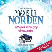 Praxis Dr. Norden 2 Hörbücher Nr. 1 - Arztroman - Der Druck war zu groß - Liebe ist anders