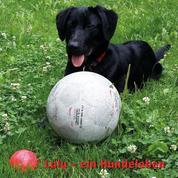 Lulu - Ein Hundeleben
