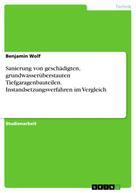 Benjamin Wolf: Sanierung von geschädigten, grundwasserüberstauten Tiefgaragenbauteilen. Instandsetzungsverfahren im Vergleich