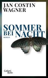 Sommer bei Nacht - Roman