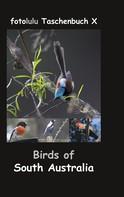 fotolulu: Birds of South Australia