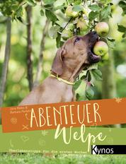 Abenteuer Welpe - Überlebenstipps für die ersten Wochen