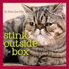 Jeremy Greenberg: Stink Outside the Box
