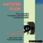 Meister Floh: - Ein Märchen in sieben Abenteuern zweier Freunde