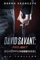 Bernd Skorczyk: David Savant: Projekt Schöpfungsengel