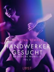 Handwerker gesucht - Teil 2: Erotische Novelle