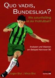 Quo vadis, Bundesliga? - Wie zukunftsfähig ist der Profifußball? – Analysen und Visionen am Beispiel Hannover 96