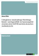 Anna Efler: Unbegleitete minderjährige Flüchtlinge. Kinder- und Jugendhilfe im Spannungsfeld zwischen dem SGB VIII und dem deutschen Ausländerrecht