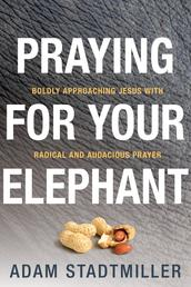 Praying for Your Elephant - Boldly Approaching Jesus with Radical and Audacious Prayer