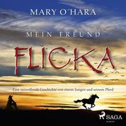 Mein Freund Flicka - Eine mitreißende Geschichte von einem Jungen und seinem Pferd