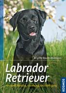 Brigitte Rauth-Widmann: Labrador Retriever