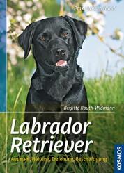 Labrador Retriever - Auswahl, Haltung, Erziehung, Beschäftigung