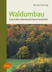 Waldumbau - Gesunden Mischwald bewirtschaften