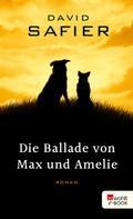 David Safier: Die Ballade von Max und Amelie ★★★★