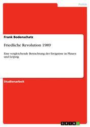 Friedliche Revolution 1989 - Eine vergleichende Betrachtung der Ereignisse in Plauen und Leipzig