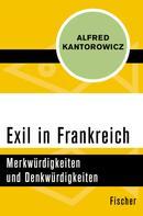 Alfred Kantorowicz: Exil in Frankreich