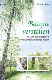 Bäume verstehen - Was uns Bäume erzählen, wie wir sie naturgemäß pflegen
