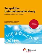 Perspektive Unternehmensberatung 2014 - Das Expertenbuch zum Einstieg. Branchenüberblick, Bewerbung, Case Studies, Expertentipps