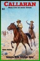 Glenn Stirling: Callahan #5: Sonora Kids blutige Spur