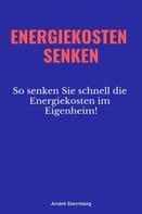 André Sternberg: Energiekosten senkenEnergiekosten senken
