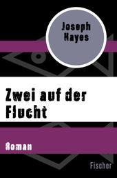 Zwei auf der Flucht - Roman