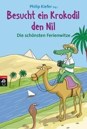 Besucht ein Krokodil den Nil - Die schönsten Ferienwitze