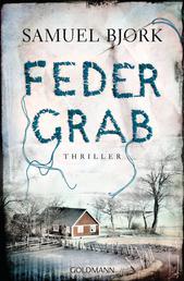Federgrab - Thriller - Ein Fall für Kommissar Munch 2